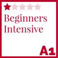 Beginners Intensive Course