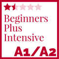 Beginners Plus Intensive Course