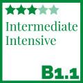 Intermediate-Intensive-Course